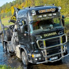 Scania R 2010-2014 Bullfaenger Rammschutzbuegel Kuhfaenger